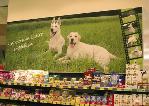 Wandbild mit Hunden